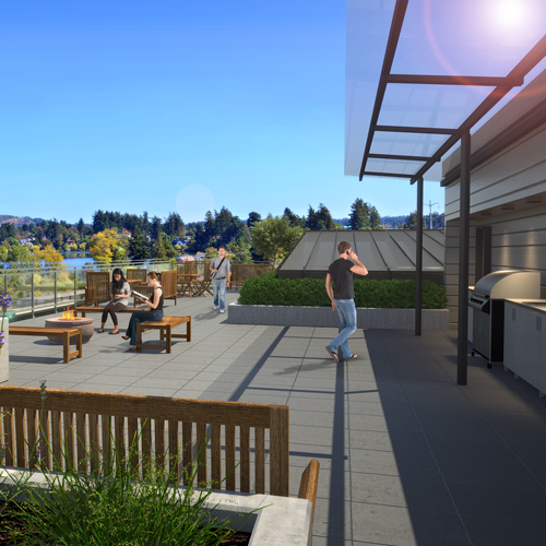 Rooftop Terrace and BBQ Area